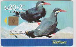 #10 - PERU-17 - BIRDS - 50.000EX. - Peru