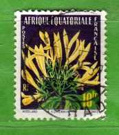(Us3)  Afrique Equatoriale Française °, AEF 1958 - FLORE Yvert.  243 . Oblitéré .  Vedi Descrizione - A.E.F. (1936-1958)