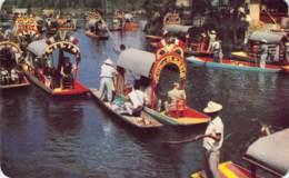 Xochimilco. D.F. Canals Through The Floating Gardens. México. - Mexique