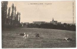 Beaumont En Auge Vue Generale - Other Municipalities