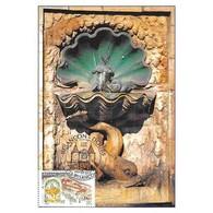 Carte Premier Jour - Besançon, Doubs, Fontaine Des Dames - 5/5/2001 - Cartes-Maximum