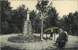 Westmalle : Drieboomkensberg ( Geschreven Met Zegel ) - Belgique