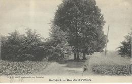 BOITSFORT : Rue Des 3 Tilleuls - RARE CPA - D.V.D. 9002 - Cachet De La Poste 1903 - Watermael-Boitsfort - Watermaal-Bosvoorde