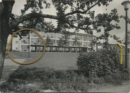 Wemmel :  Rijksnormaalschool   Originele Foto NELS 1963   -  15 X 10.5 Cm  (  Zie Scans ) - Wemmel