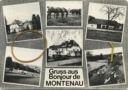 Montenau :  Gruss Aus - Bonjour De   --  Ecrit Avec Timbre   (  Format 15 X 10.5 Cm ) - België