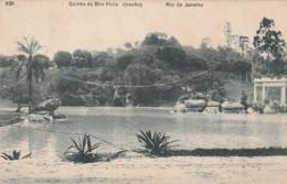 *** BRESIL  ***   RIO DE JANEIRO  Quinta Da Boa Vista  TTB Stamped - Rio De Janeiro