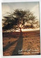 BAHRAIN - AK 350874 Tree Of Life - Bahrain