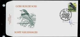 FDC Du N° 2654  Gobe-Mouche Noir    / Bonte Vliegenvanger   Obl.  Bruxelles - Brussel 29/06/96 - 1985-.. Oiseaux (Buzin)