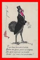 CPA 1er AVRIL.  T'as Beau Faire De La Toilette Etc, Dindon Habillé...A644 - 1° Aprile (pesce Di Aprile)