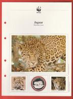 30 JAHRE WWF Silber Gedenkmünze Silver Coin / Ag 999 PP / Tiere Animals Animaux Jaguar Panthera Onca - Münzen
