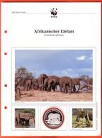 30 JAHRE WWF Silber Gedenkmünze Silver Coin / Ag 999 PP / Tiere Animals Animaux Afrikanischer Elefant Loxodonta Africana - Münzen