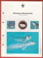 30 JAHRE WWF Silber Gedenkmünze Silver Coin / Ag 999 PP / Tiere Animals Animaux Mittelmeer-Mönchsrobbe Monachus Monachus - Münzen