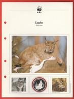 30 JAHRE WWF Silber Gedenkmünze Silver Coin / Ag 999 PP / Tiere Animals Animaux Luchs Felis Lynx - Münzen