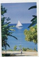 HAITI - AK 351030 Haitian Sailboat On The Southwest Coast - Haiti