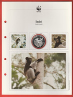 30 JAHRE WWF Silber Gedenkmünze Silver Coin / Ag 999 PP / Tiere Animals Animaux Indri - Münzen