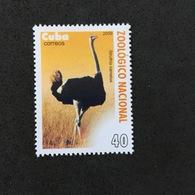 CUBA. BIRDS. MNH. 4R1001G - Ostriches