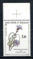 SPM MIQUELON 1993 N° 575 ** Neuf MNH Superbe C 1.70 € Faune Fleur Insectes Animaux Flowers Monochamus Cichorium - Neufs