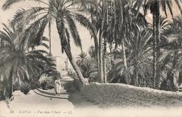 Tunisie Gafsa Vue Dans L' Oasis Cachet 1910 BM Boite Mobile - Tunisia