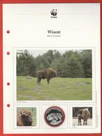 30 JAHRE WWF Silber Gedenkmünze Silver Coin / Ag 999 PP / Tiere Animals Animaux Wisent Bison Banasus - Münzen