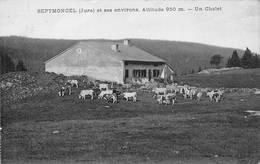 Septmoncel Canton Saint Claude Un Chalet Vaches Berger - Septmoncel