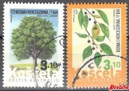 Bosnia Croatian Post :Flora  European Nettle 2013 Used Set - Bosnie-Herzegovine