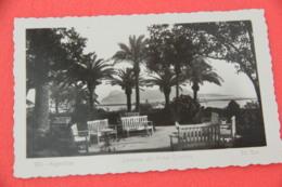 Andalucia Algeciras Jardines Hotel Cristina Ed. Sur N. 201 NV - Espagne