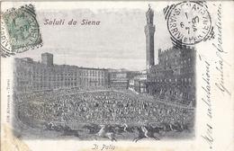 SALUTI DA SIENA  IL PALIO -   468 ALTEROCCA  TERNI-  1907 - Siena