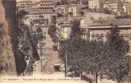 Monaco - L'Avenue De La Gare - Monaco