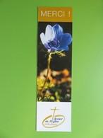 Marque-page - Merci ! - Fleur Anémone Bleu - Extrait Lettre De Saint-Paul - Marcapáginas