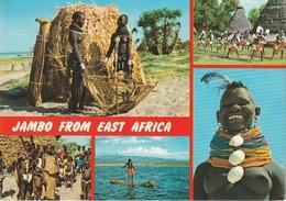 Cartolina Dalla Tanzania ( Nudi ) - Per Ponzone 1991 (vedi Foto) - Tanzania