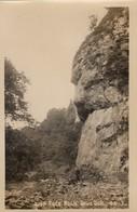 Postcard Lion Face Rock Dove Dale Derbyshire By Greeting Card House Ltd Sheffield My Ref  B13318 - Derbyshire