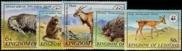 Lesotho 1981 Wildlife Unmounted Mint. - Lesotho (1966-...)