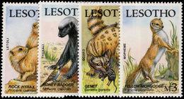 Lesotho 1988 Small Mammals Unmounted Mint. - Lesotho (1966-...)