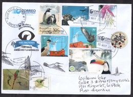 Argentina - 2019 - Oiseaux D'Argentine - Faune - Parcs Nationaux - Forêts - Argentina