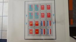 Grosse Collection Nations Unies En SAFE Avec étui Série Drapeaux En Blocs Et Timbres ** Complet.. A Saisir !!! - Stamps