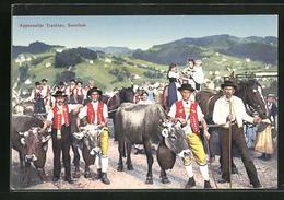 AK Schweiz, Männer In Appenzeller Trachten Treiben Ihr Vieh Von Den Almen Herunter, Käseherstellung - Viehzucht