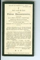 DP De Maeseneire Petrus, Ronse 1900 - Devotion Images