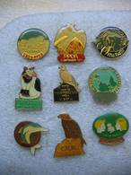 Lot De 9 Pin's De L'Association De Défense Des Animaux 'PPDA-CNDA. - Animals