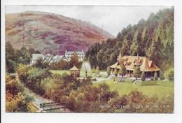 Swiss Cottage, Glen Helen, I.O.M. - Art Colour 195 - Isle Of Man