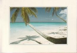 Cartolina Dalla Tanzania (Beach Of Zanzibar) - Per Bologna 1997 (vedi Foto) - Tanzania