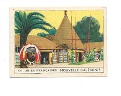 Nouvelle Calédonie  Chromo Didactique  70 X 50 Mm TB Ss Pub. Colonies Françaises 2 Scans (Enchères Anonymes) - Trade Cards