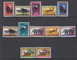 Ruanda-UIrundi 1959 Animals 12v ** Mnh (42940) - Ruanda-Urundi