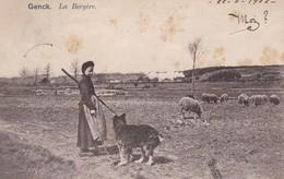 619 Genk La Bergere - Genk