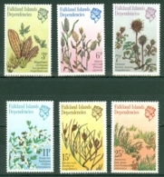 Falkland Islands Dep: 1981   Plants        MH - Falkland Islands