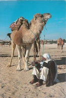 Cartolina Dalla Tunisia (Deserto, Dromedario) Per Appiano 1998 (vedi Foto) - Tunisia