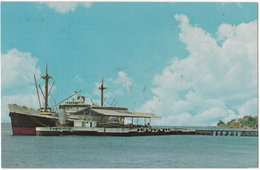971. Pf. BASSE-TERRE. Le Port. 95612 - Basse Terre