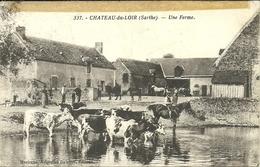 ( CHATEAU DU LOIR )( 72 SARTHE  ) ( FERME )( METIERS )( AGRICULTURE ) - Farms