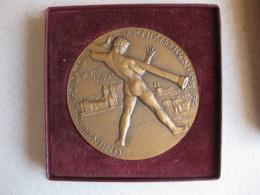 Médaille Centenaire De La Fondation De Pont à Mousson 1956 , Attribuée à E. PETER, Par Dropsy - Other