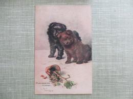 CPA ILLUSTRATEUR RAPHAEL TUCK OILETTE POMERANIAN PUPPIES CHIENS CHIOTS PLANTE CASSEE - Tuck, Raphael