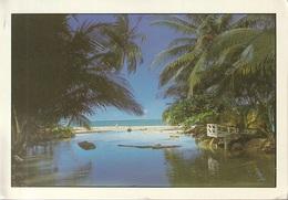 Cartolina Dalla Repubblica Dominicana (LAS TERRENAS, SAMANA) Per Povolaro 1993 (vedi Foto) - Repubblica Dominicana